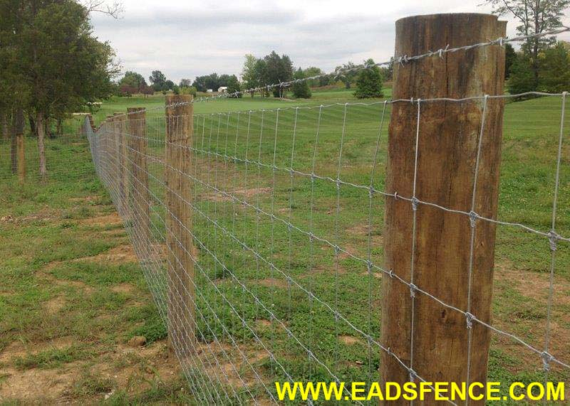 "Custom cedar wood fence with 6x6 posts, 6"" overlapping ...