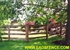 Picture of 4 Rail Board Fence Photo Gallery
