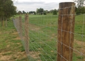 Picture for category Wire Fence Photo Galleries